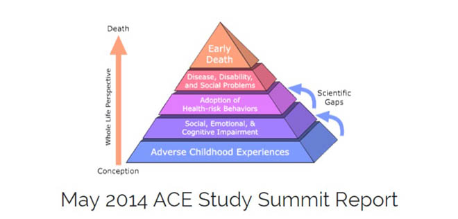 2014 ACE Summit Report graphic